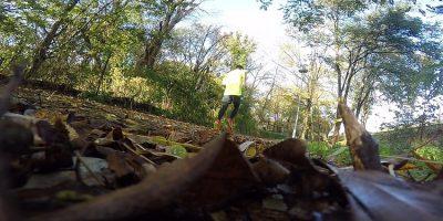 Motivationstipps zum Laufen im Herbst